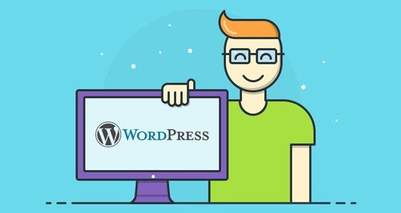 WordPress Services & Developer